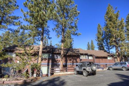 Warmth and wildlife ambiance in the mountains - HCC0600 - Image 1 - South Lake Tahoe - rentals