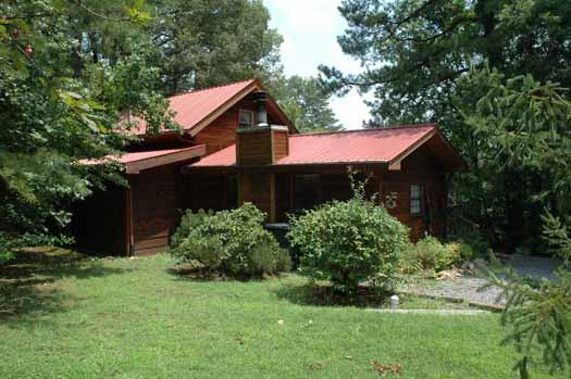 Beary Good Time - Image 1 - Pigeon Forge - rentals