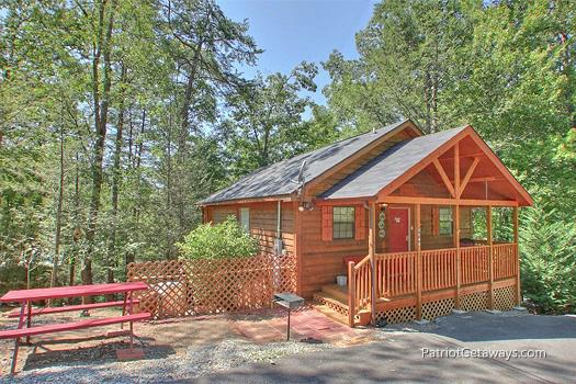 Mountain Manor - Image 1 - Gatlinburg - rentals