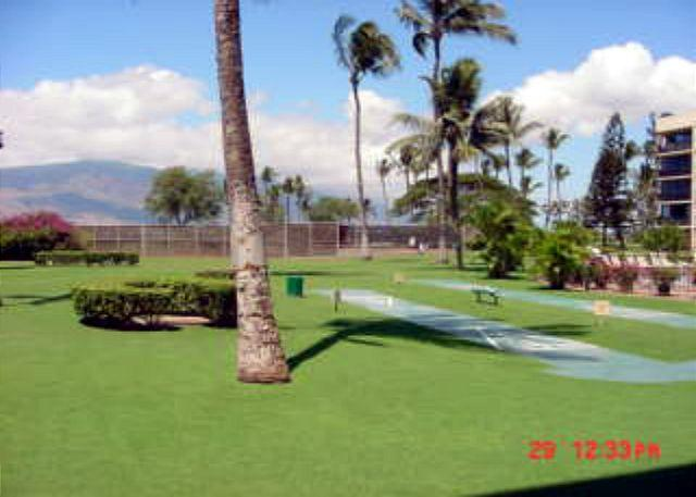 MS 118B Grounds - Maui Sunset 118B~INQUIRE SUMMER SPECIAL! - Kihei - rentals