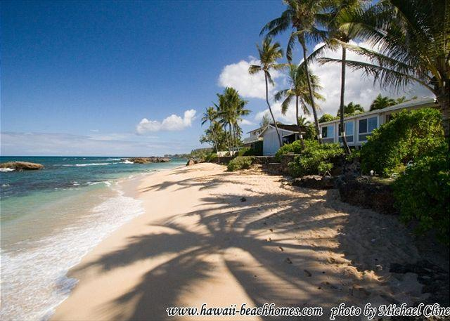full size photo 0 - C8. Three Palms - North Shore - Haleiwa - rentals