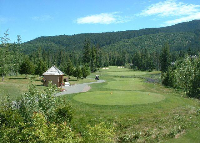 Luxury 3 bedroom townhouse on Chateau Whistler golf course, free internet - Image 1 - Whistler - rentals