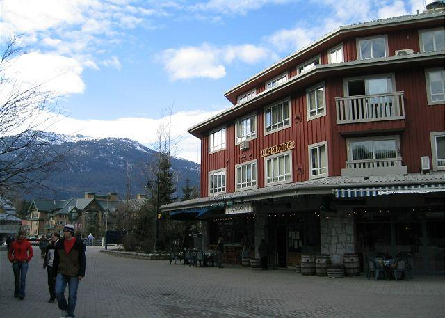 Upgraded 2 bdm condo, prime location, free internet, hot tub available. AC - Image 1 - Whistler - rentals