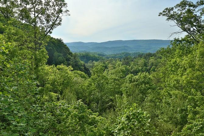 Stars over the Smokies - Image 1 - Sevierville - rentals