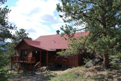Trees Surrounding the Home Bring Wildlife Right in the Yard - Hummingbird Hideout - Estes Park - rentals