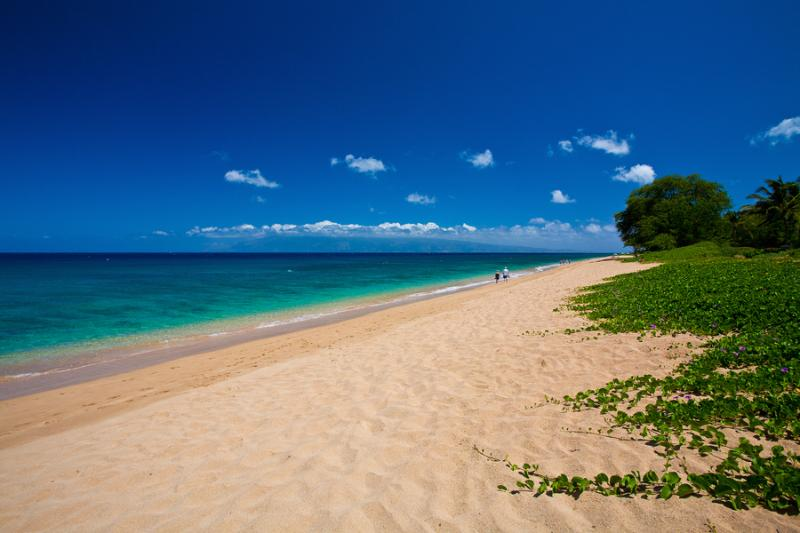 Your Beach in Front of Sea Shells Beach House! Amazing Walks Along Kahekili Beach Park on Ka`anapali Beach - Sea Shells Beach House - Kaanapali - rentals