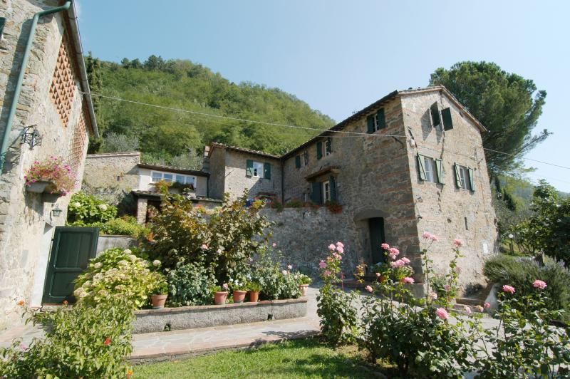 Accommodation near Lucca  - L'Asilo 2 - Image 1 - Matraia - rentals