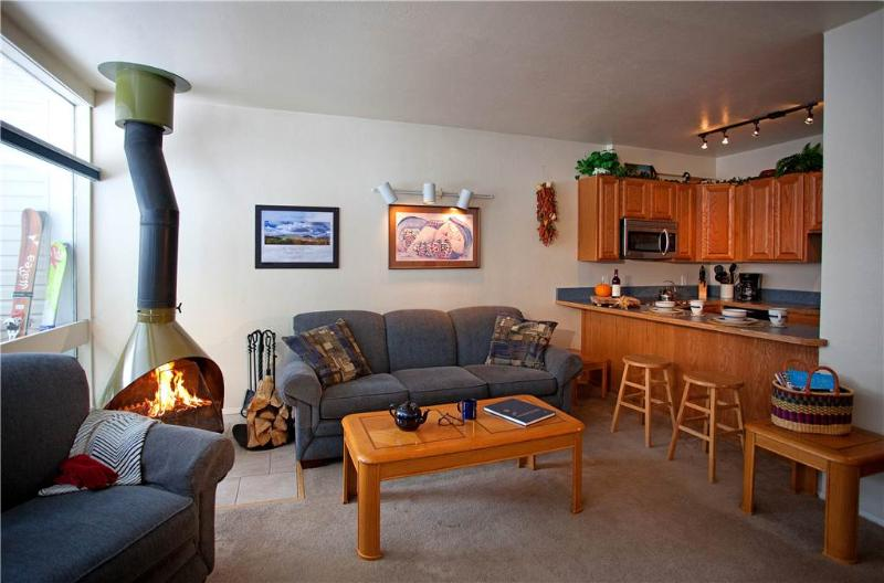 Adorable 1BR conveniently located near the office - Condo 03 - Image 1 - Taos Ski Valley - rentals
