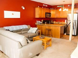 Wonderful newly remodeled 5BR w/ mountain vista - Condo 33 - Image 1 - Taos Ski Valley - rentals