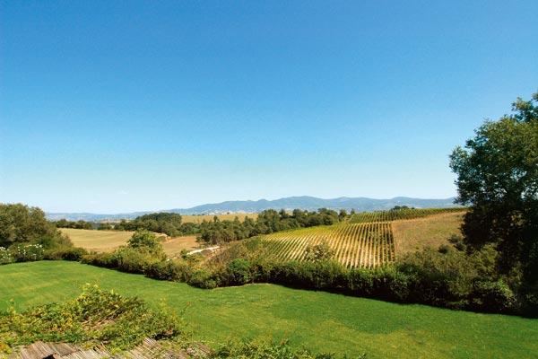 Panoramic views of the countryside with large pool. HII MEL - Image 1 - Umbria - rentals