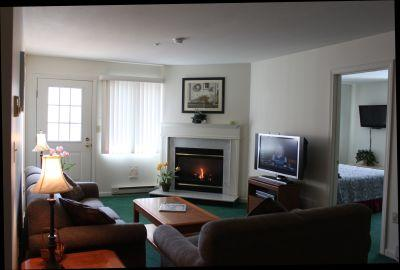 Luxurious 2BR condo with balcony, fireplace - A2 202A - Image 1 - Lincoln - rentals