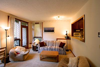 The living area - #91 - Charming Snowater Condo near Mt. Baker - Glacier - rentals