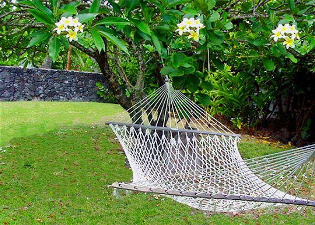 Relax and listen to the breeze in the palms and the sound of the waves as you lie in a hammock under the stars. - Let the Ocean Sounds Soothe You at The Cottage - Pahoa - rentals