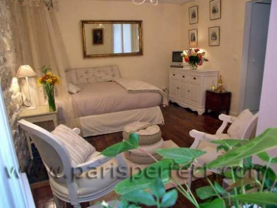 Large Studio! - Image 1 - Paris - rentals