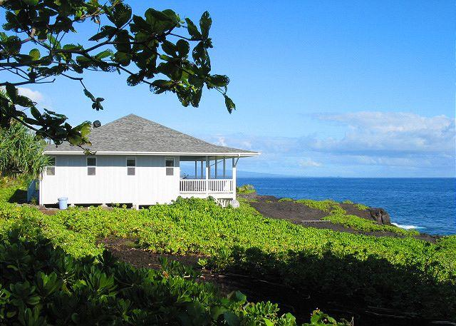 Hale Ehu Kai is directly on the Puna coast with unobstructed views of the ocean and coastline both north and south. - Wheelchair Friendly Oceanfront Home (Hale Ehu Kai) - Pahoa - rentals