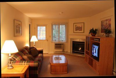 1BR condo with TV/DVD/VCR and King bed - A2 203A - Image 1 - Lincoln - rentals