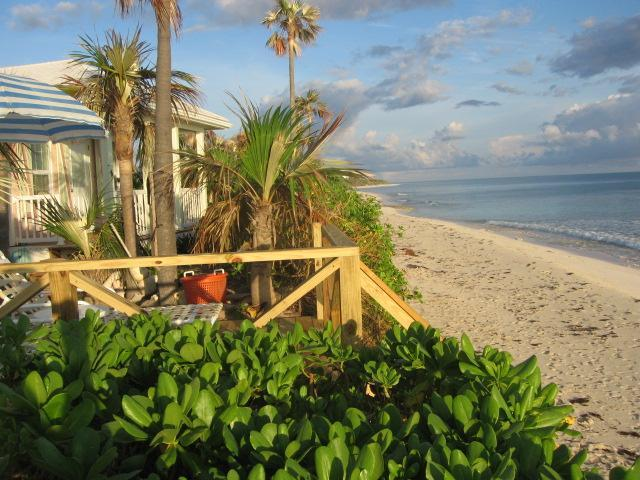 """The Pink Sand Cottage  """"RIGHT ON THE BEACH""""  Wi Fi - Image 1 - North Palmetto Point - rentals"""
