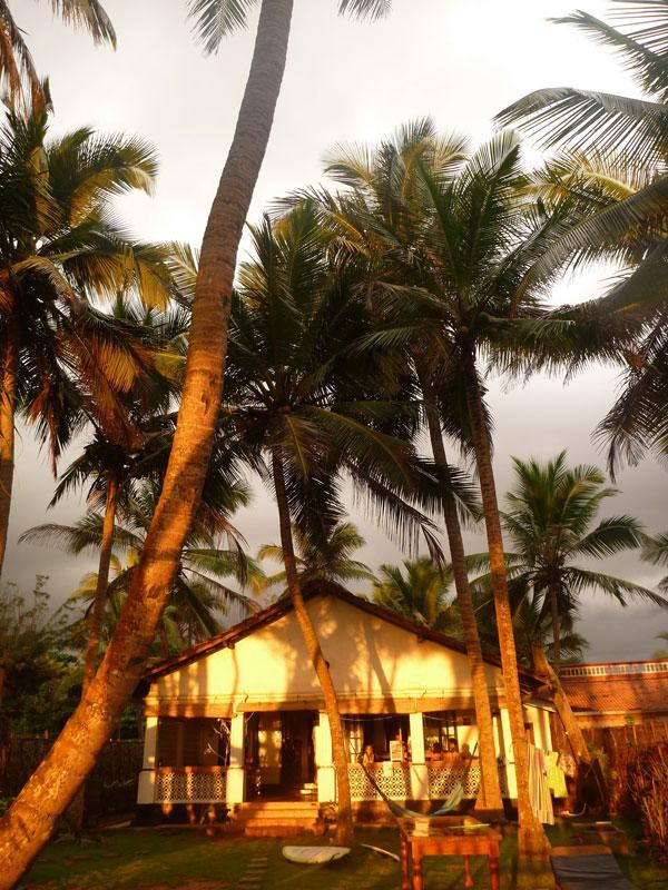 Gorgeous evening glow on the Beach House - The Beach House, Hikkaduwa, Sri Lanka - Hikkaduwa - rentals