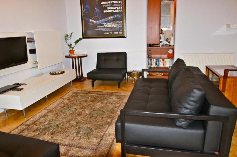 Apartment Andrei's living room (with queen convertible sofabed) - Apt Andrei, Bakats ter: Elegance & SUMMER SAVINGS - Budapest - rentals