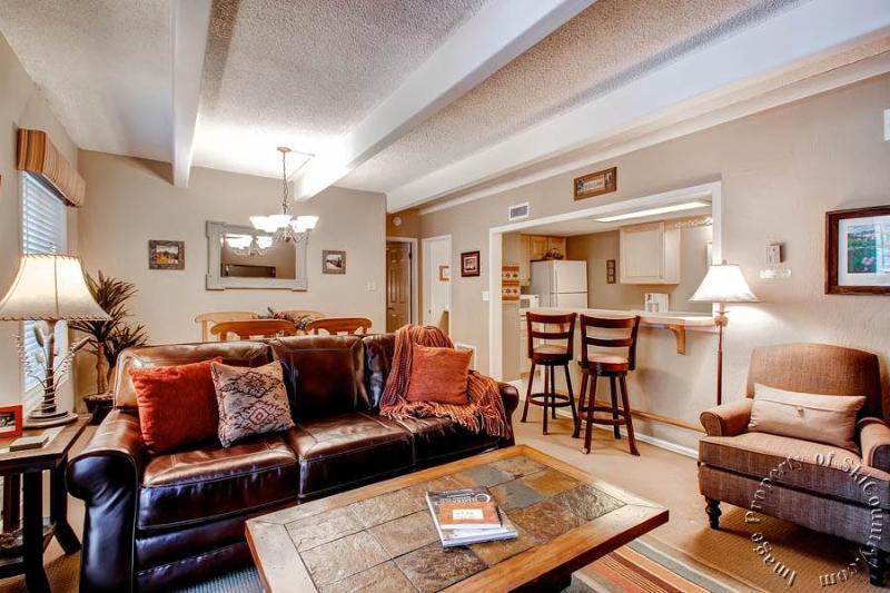 Gorgeous 1 Bedroom, 1 Bathroom Condo in Breckenridge (Columbine Condos - 1 Bdrm #108 (CL108)) - Image 1 - Breckenridge - rentals