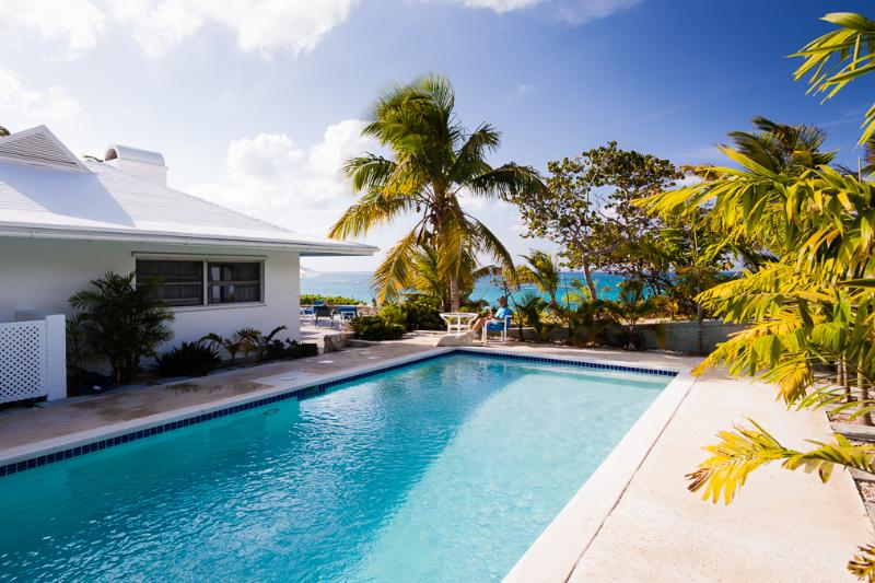 Swimming Pool with View of Atlantic Ocean - Heron Hill :  Beachfront Villa with swimming pool - North Palmetto Point - rentals