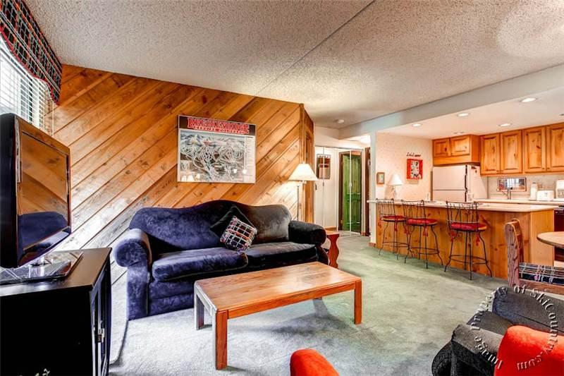 Picturesque Condo in Breckenridge (Trails End Condos 117 - 1 Bdrm (TE117)) - Image 1 - Breckenridge - rentals