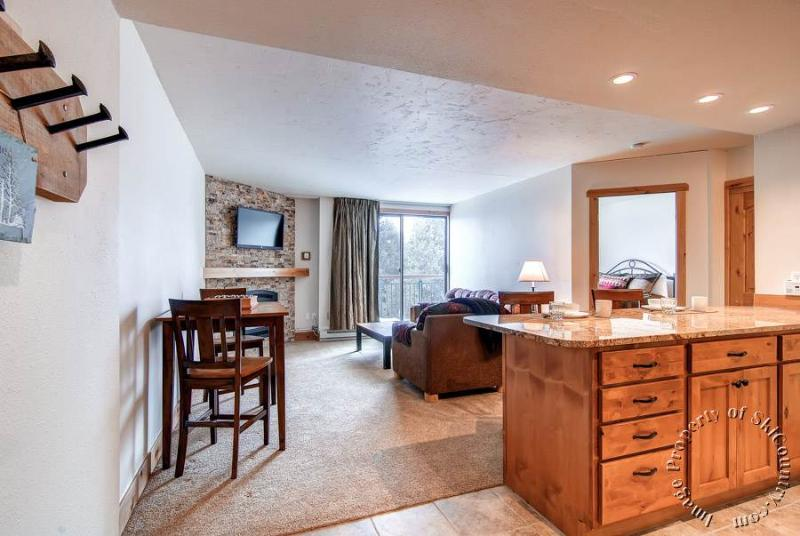 Breckenridge 1 Bedroom & 1 Bathroom Condo (Trails End Condos 406 - 1 Bdrm (TE406)) - Image 1 - Breckenridge - rentals