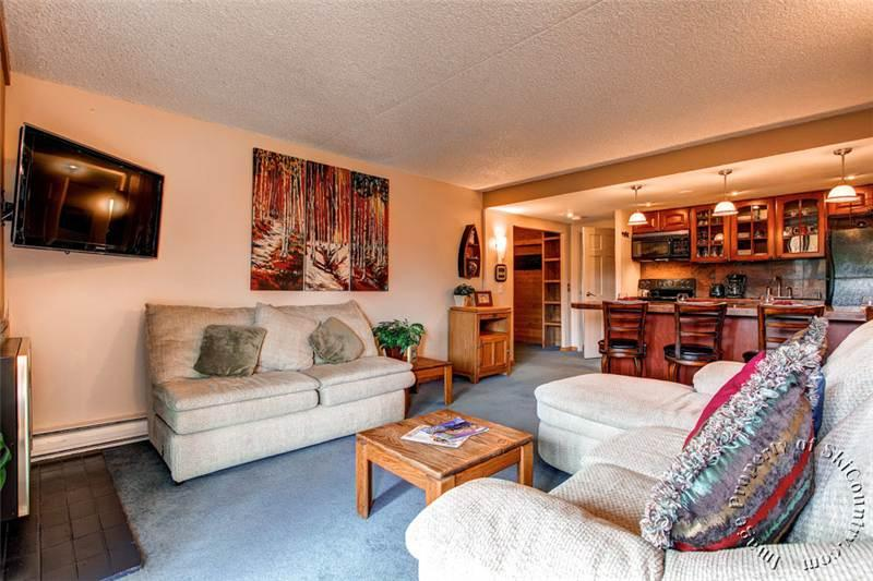 Condo with 2 BR/2 BA in Breckenridge (Trails End Condos 510 - 2 Bdrm (TE510)) - Image 1 - Breckenridge - rentals