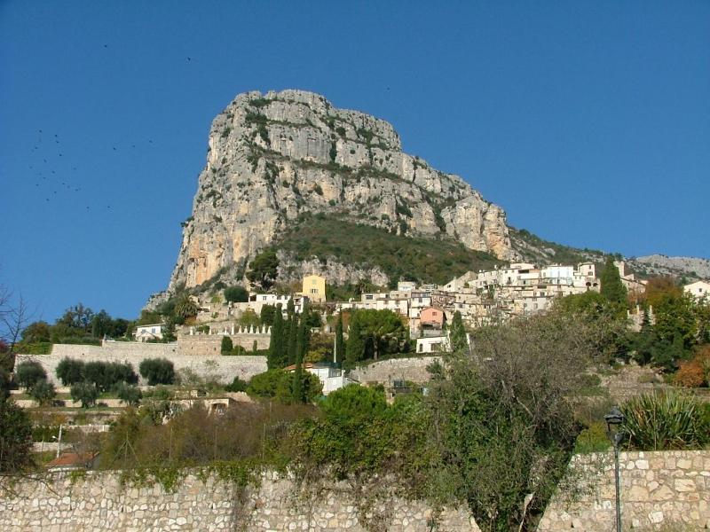The Bahu Rock seen from outside the apartment - A Dreamy Garden Apartment in Vence France - Vence - rentals
