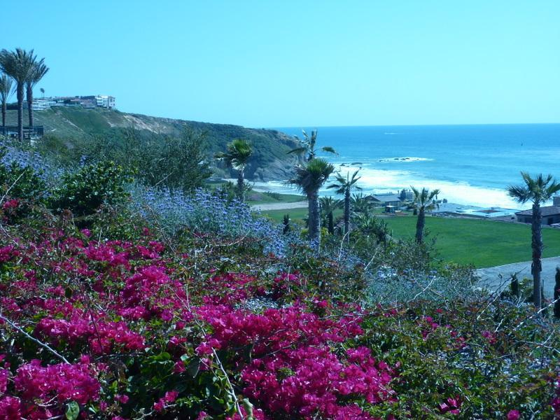Strand Beach . . .the footprints you see will be your own - Cleopatra. . Panoramic Ocean View   Open - Dana Point - rentals