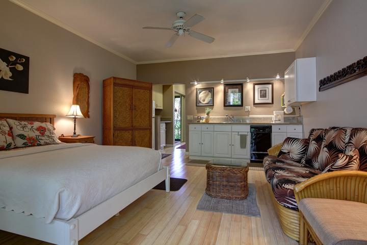 Spacious, beautifully furnished studio - SPACIOUS LUXURY STUDIO FOR LESS - Wailea - rentals