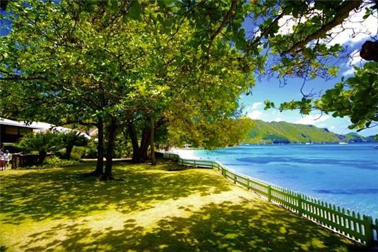 Mimosa House - Bequia - Mimosa House - Bequia - Belmont - rentals