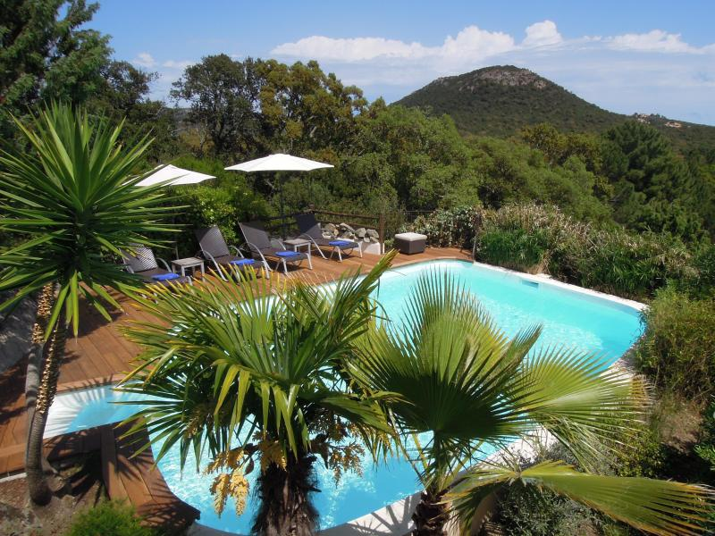 The private pool heated secluded among the mediterranean nature. - Porto Vecchio - Luxury villa near top European beaches private pool heated - Porto-Vecchio - rentals
