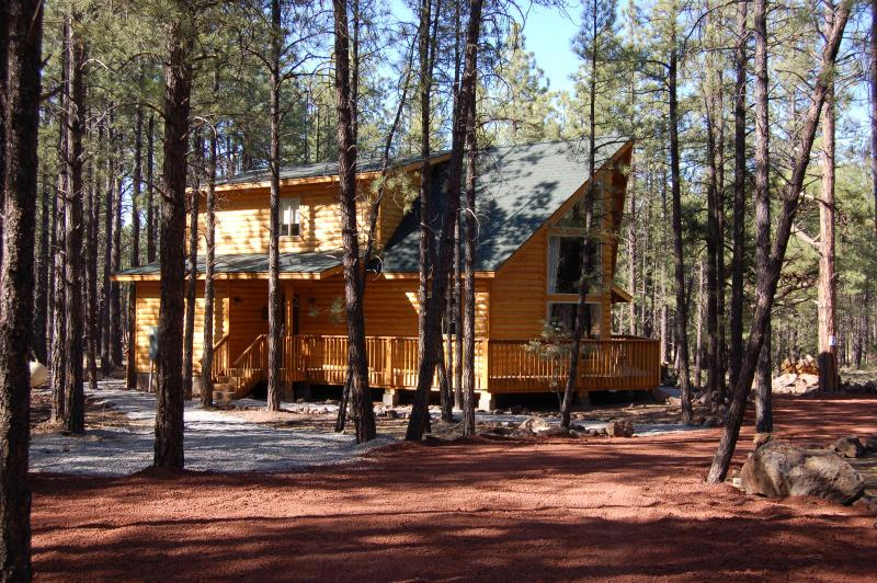 Raccoon Ranch and Surroundings - Raccoon Ranch Cabin in Grand Canyon/Flagstaff area - Grand Canyon - rentals