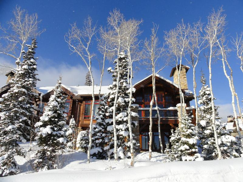 Front of Larkspur ski in ski out home - Ski in/out! 20-mile views! Christmas wk available! - Deer Valley - rentals