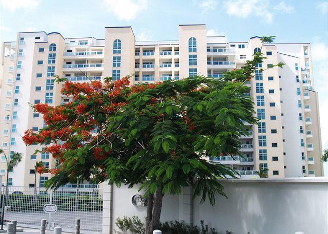 The main entry - The Cliff at Cupecoy 5th Floor * C5*, 7 pay 6- starting at $350 US - Cupecoy - rentals