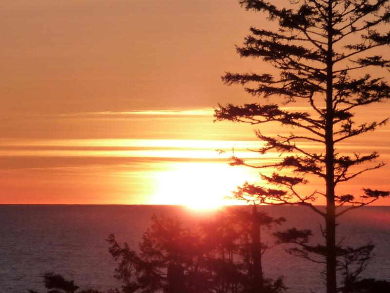 Best sunsets on the Pacific Rim! - Luxurious West Coast Villa - Ucluelet - rentals