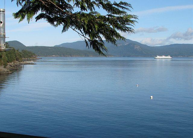 Watch the ferries come on & go from the back yard. - Cedars by the Sea on Lopez Island - Lopez Island - rentals
