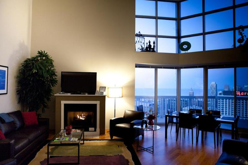 Penthouse #4 - Image 1 - Chicago - rentals