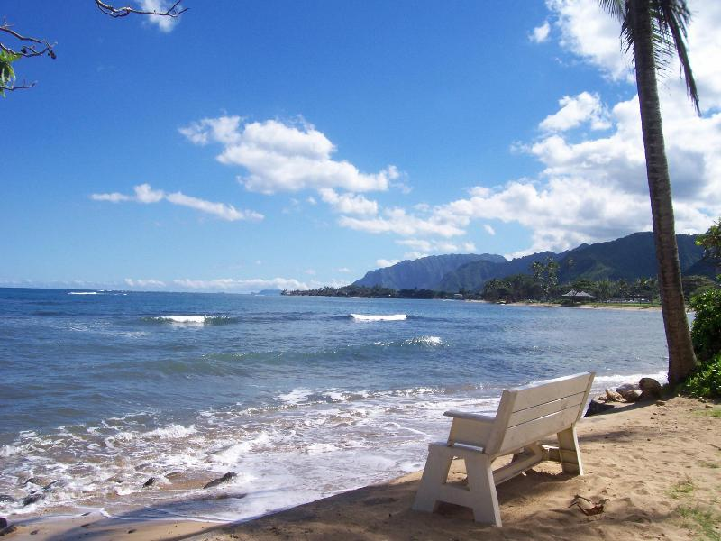 Beach just 80 feet away - Molokai Beachside Studio - North Shore - rentals