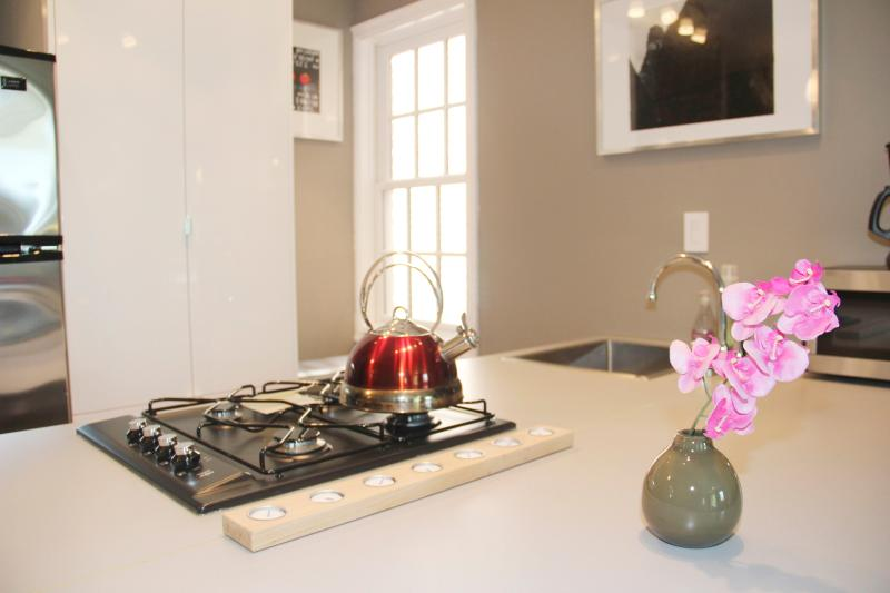 Luxury One Bedroom Apartment in Best Location - 2 blocks to metro - Image 1 - Washington DC - rentals