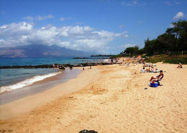 Kamaole Beach #3 just across from the Maui Kamaole - Maui Kamaole E204  2B 2B  Sleeps 6 Great Rates! - Kihei - rentals