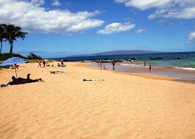 Keawakapu Beach a short stroll from the Palms - Palms at Wailea 702 Upstairs Garden View 1Bd 2Ba Sleeps 4  Great Rates! - Wailea - rentals