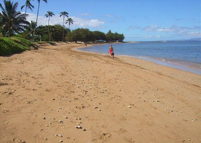 Located Right on the Beach in Kihei - Maui Sunset  A204 1Bd 1 Ba Oceanfront Property. Great Rates!! Sleeps 5 - Kihei - rentals