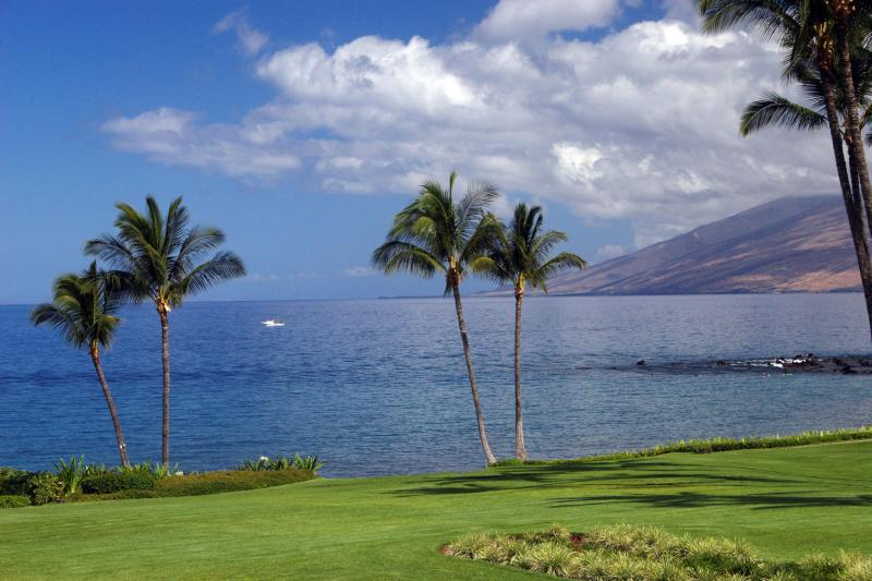 Actual View From Our Condo - Wailea Elua Oceanfront - Owner Direct, Renovated! - Wailea - rentals