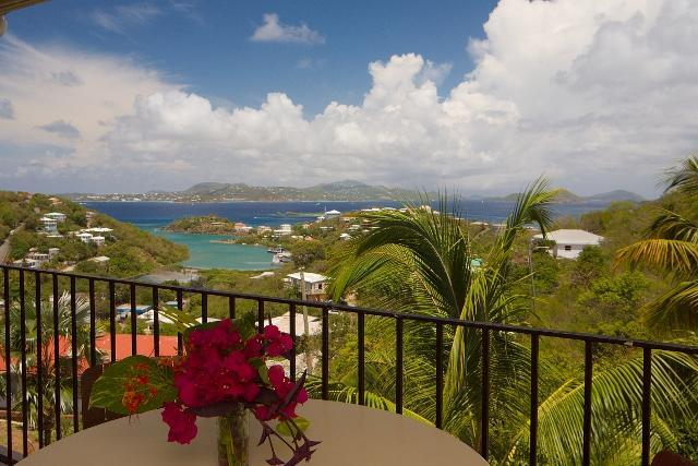 One of many fabulous views from Serendip's private verandas. - Spacious Cruz Bay Condos w/Ocean Views @ Serendip - Cruz Bay - rentals