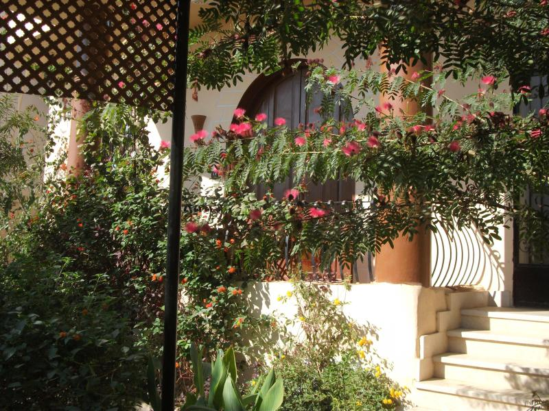 The beautiful front garden - VILLA BAHRI Oasis of peace near the Theban Hills - Luxor - rentals