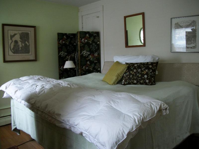 Double Pillow Top Bedroom, Flat Screen TV, Netflix - Christmas & New Year Holidays, Historic District - Frederick - rentals