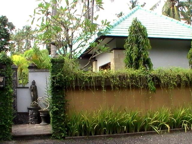on the right side villa Hijau - Bali holiday Villa Oasis Hijau - Sanur - rentals