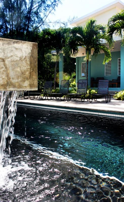 You'll love the soothing sound of our pool's waterfall. - Casa Tolteca-Stylish Modern Villa w/Pool and Views - Vieques - rentals